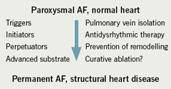 Figure 1. Component parts of atrial fibrillation (AF) and potential interventions