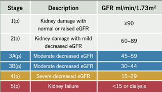 Table 2. NICE Guidelines Stages of CKD