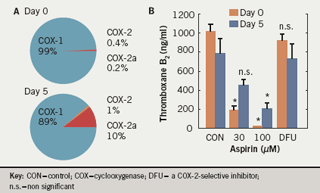 Figure 1. A: proportions of COX-1, COX-2 and COX-2a mRNA and B: inhibition of AA-induced thromboxane formation by aspirin and a selective COX-2 inhibitor at days 0 and 5 post cardiac surgery