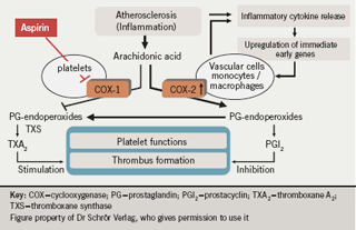 Figure 2. COX-2 dependent, aspirin-insensitive thromboxane formation as a result of myocardial ischaemia