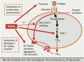 Figure 2. Antithrombotic effects of aspirin other than COX-1 inhibition (2-5)
