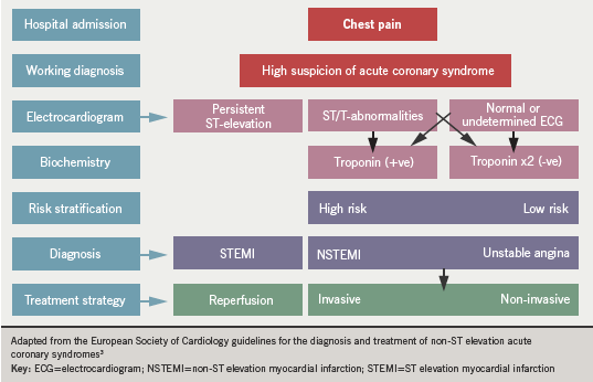 Figure 1. The spectrum of acute coronary syndromes