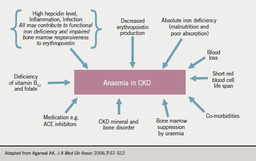 Lessons To Be Learned From Recent Studies Of Anaemia Management In Chronic Kidney Disease The British Journal Of Cardiology