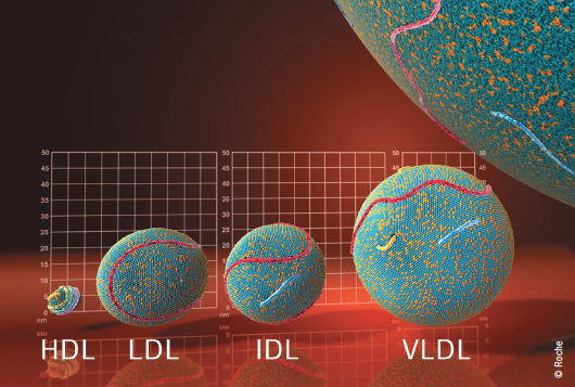 Lipids and cardiovascular disease: re-thinking targets