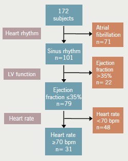 Figure 1. Flow chart of heart failure characteristics after optimisation of medication