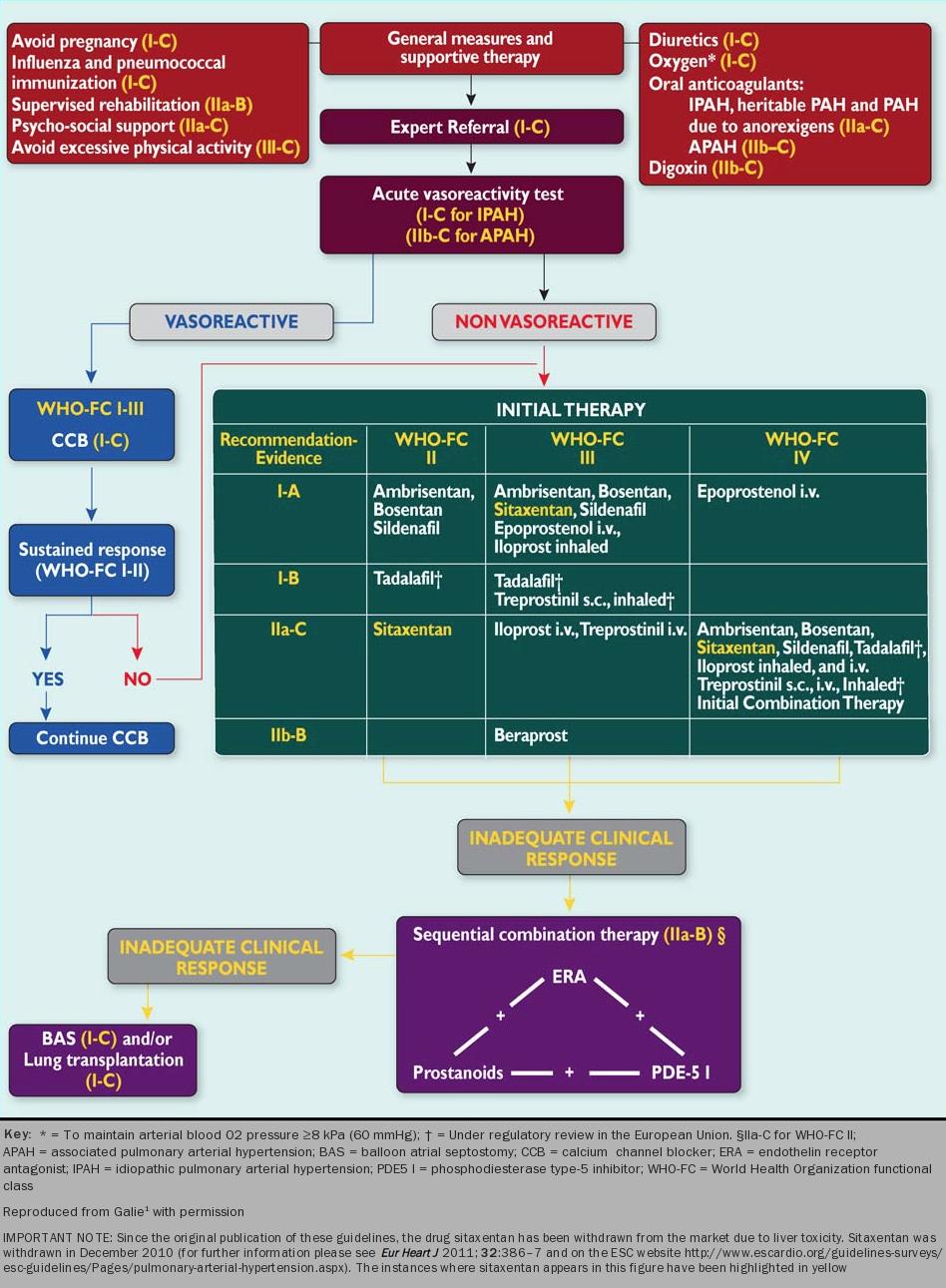 DEFUNCT PAH module 3: the treatment of pulmonary..