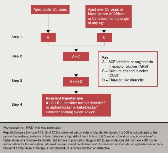 Figure 4. Recommendations for antihypertensive drug treatment(1)