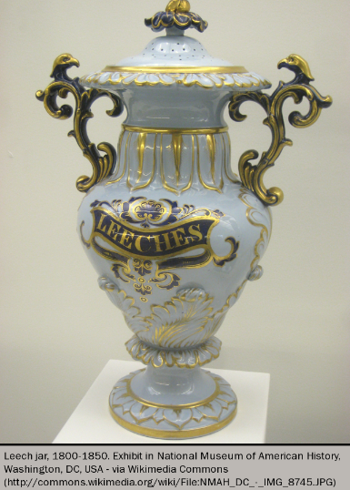 Figure 2. Medicinal leech jar