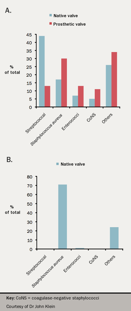 Figure 1. Histogram of frequencies of organism 1970–2005 at St Thomas Hospital in A) native and prosthetic valve endocarditis, and B) intravenous drug use