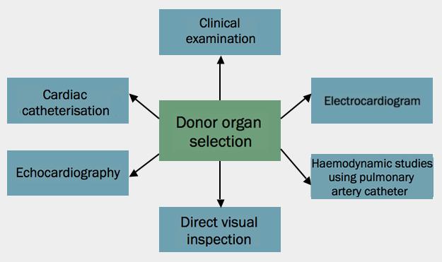 Figure 7. HeartMate II® (Thoratec Corporation)