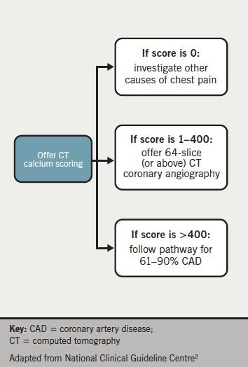 Figure 1. Coronary angiography calcium (CACS) scoring pathway(2)