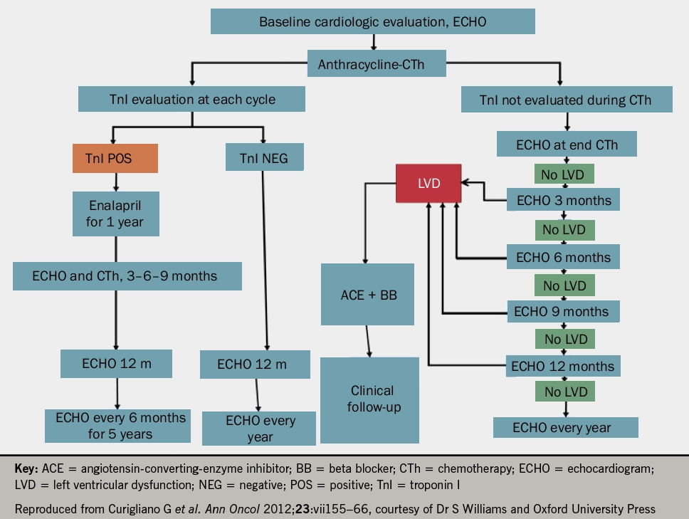 Figure 1. A monitoring and treatment algorithm for cardio-oncological patients receiving anthracyclines