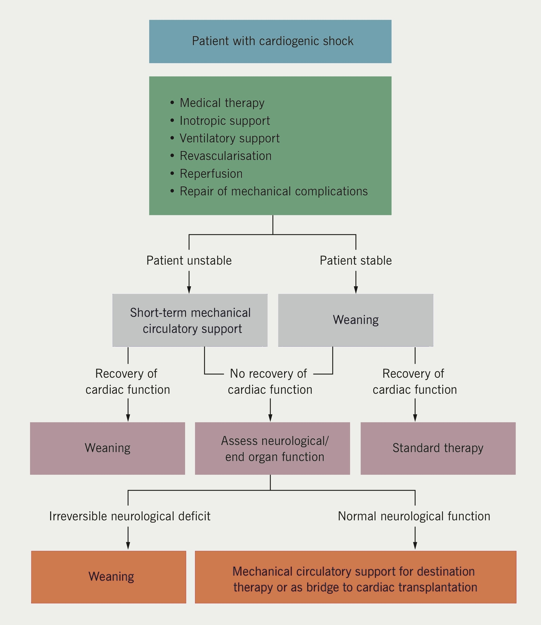 Figure 2. European Society of Cardiology (ESC)/European Association for Cardio- Thoracic Surgery (EACTS) guidelines on myocardial revascularisation. Treatment of patients with cardiogenic shock(18)