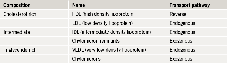Table 1. The composition of the various lipoproteins and their transport pathways