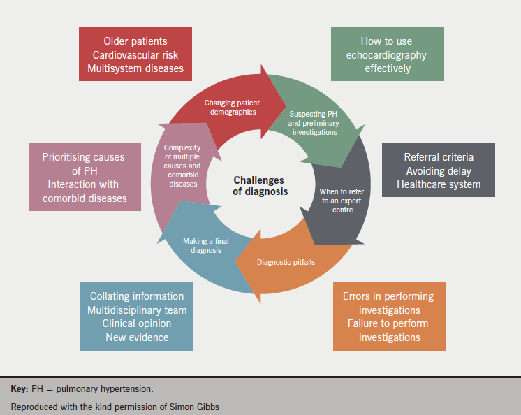Figure 4. The challenges of diagnosis of pulmonary arterial hypertension
