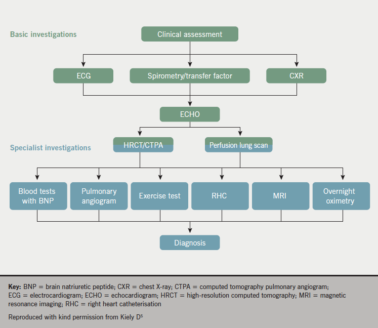 Figure 5. Diagnostic approach to suspected pulmonary hypertension