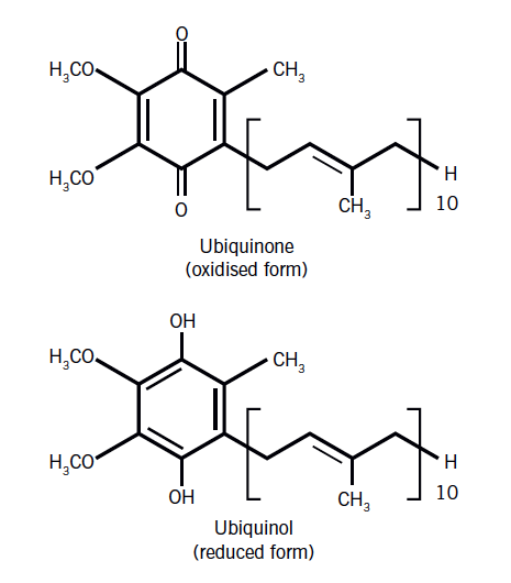 Figure 1. Structure of coenzyme Q10