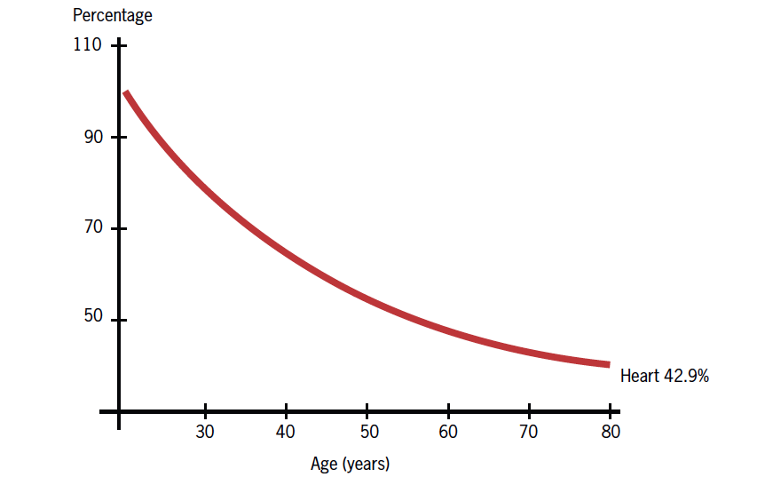 Figure 4. Age-related decrease in coenzyme Q10 in cardiac tissue