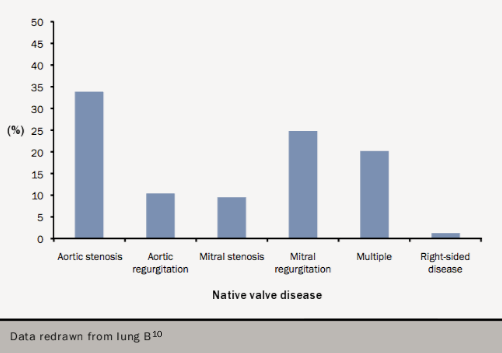 Figure 13. Frequency of valve disease in the EuroHeart Survey