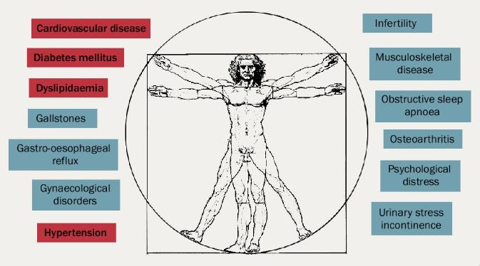 Figure 5. Comorbidities associated with obesity