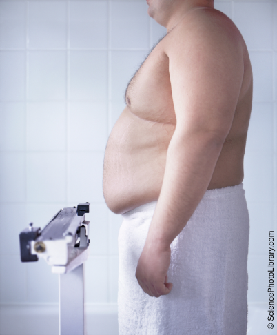 The GP plays a pivotal role in weight management