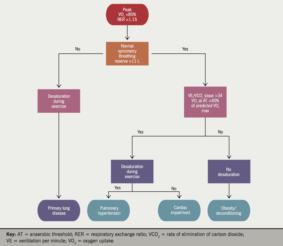 Figure 6. Simplified diagnostic flowchart