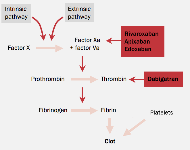 Figure 3. Sites of action of DOACs