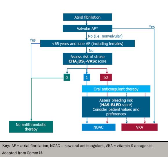 Figure 9: Oral anticoagulation for stroke prevention