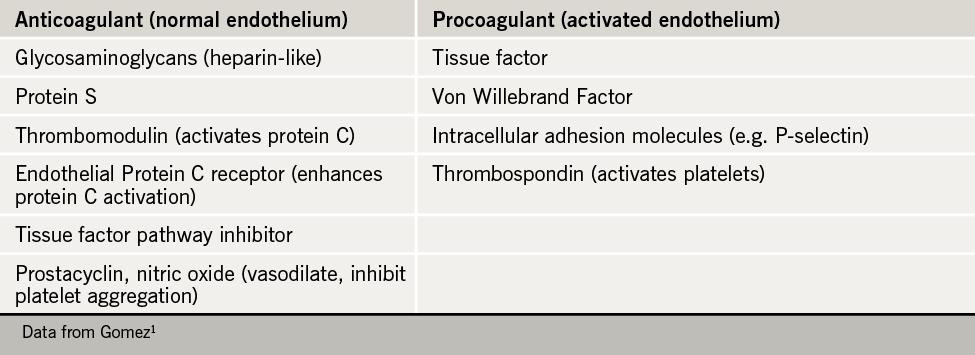 Table 1. Involvement of the endothelium in haemostasis1