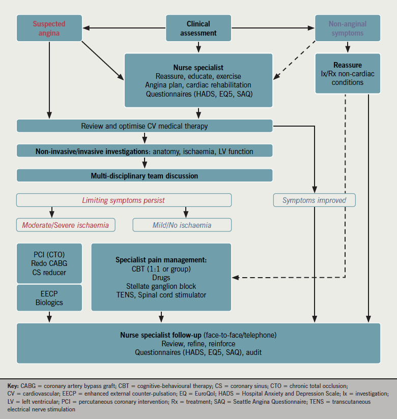 Figure 1. Management pathway for patients with suspected refractory angina