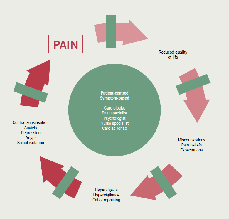 Figure 2. The pain cycle leading to the development of refractory angina and targets for structured multidisciplinary intervention