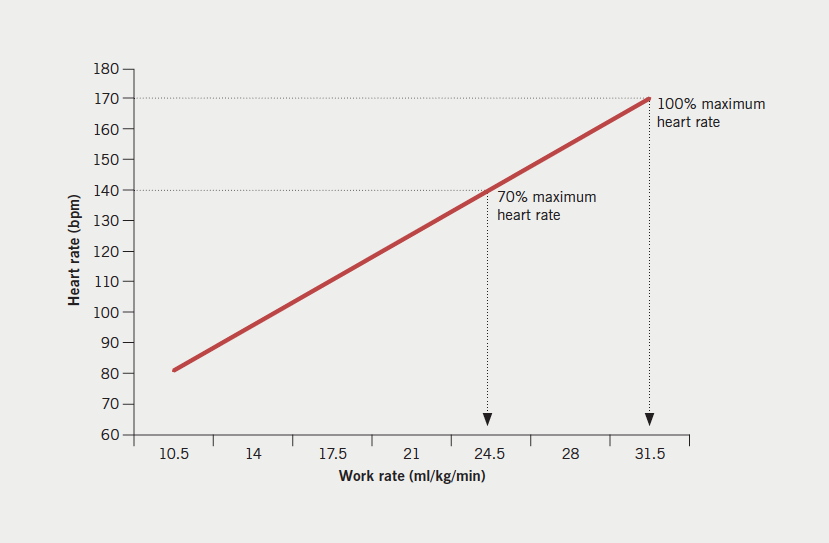 Figure 2. Linear relationship between heart rate and work rate in the prediction of VO2 max