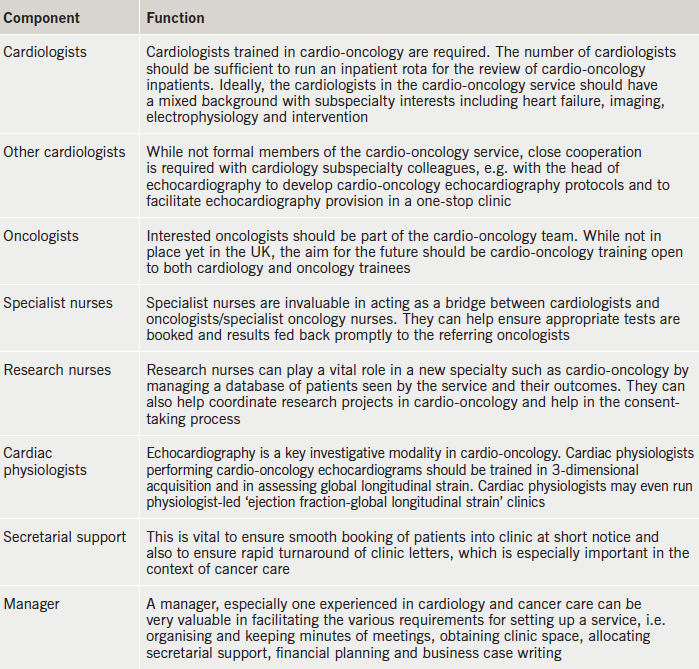 Table 1. Components of a cardio-oncology service and their attributes