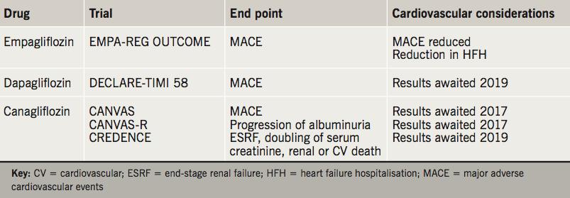 Table 2. SGLT2 inhibitors – cardiovascular considerations
