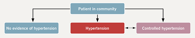 Koshy - Figure 1. Suggested model for hypertension