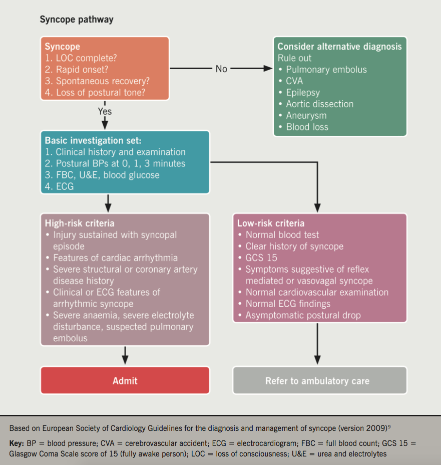 MacLachlan - Figure 1. Post-audit improvised syncope pathway referral protocol
