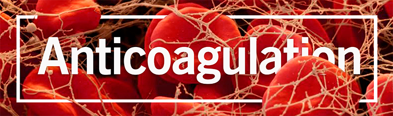 Programme-Anticoagulation