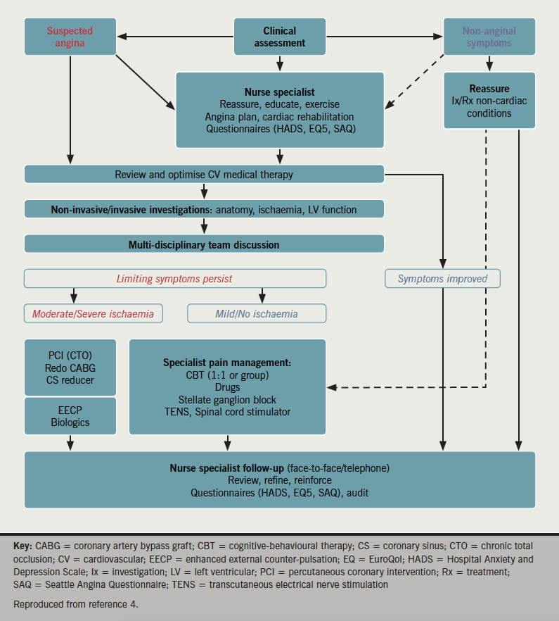 Cheng - Figure 1. Schematic showing our multi-disciplinary care pathway for refractory angina