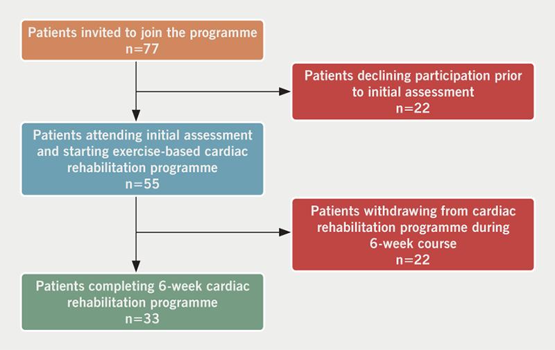 Mills - Figure 1. Schematic summary of patient recruitment and data flow
