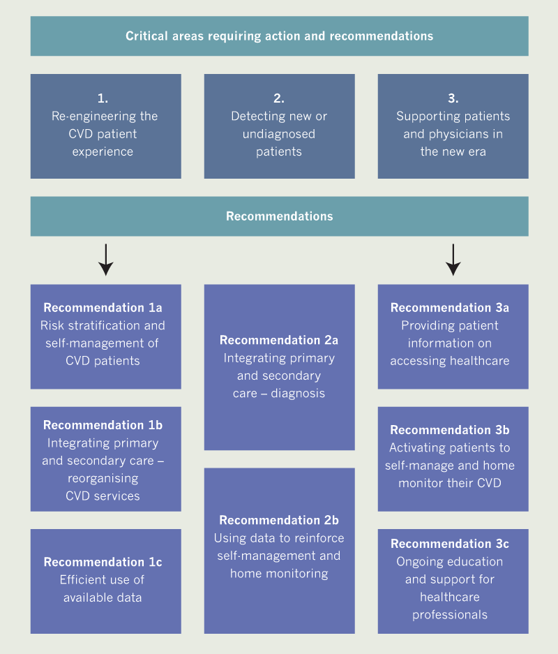 BJC 2020 supplement 2 - Figure 3. Summary of the steering committee recommendations for adapting cardiovascular (CVD) disease care to the 'new norm' of the COVID-19 era and beyond