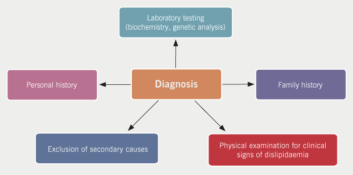 Lipids module 3 - Figure 1. Key methods of assessment in the accurate diagnosis of lipid disorders